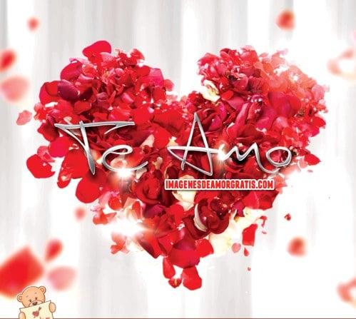 Frases De Amor Con Movimiento Con Un Corazon De Rosas Rojas
